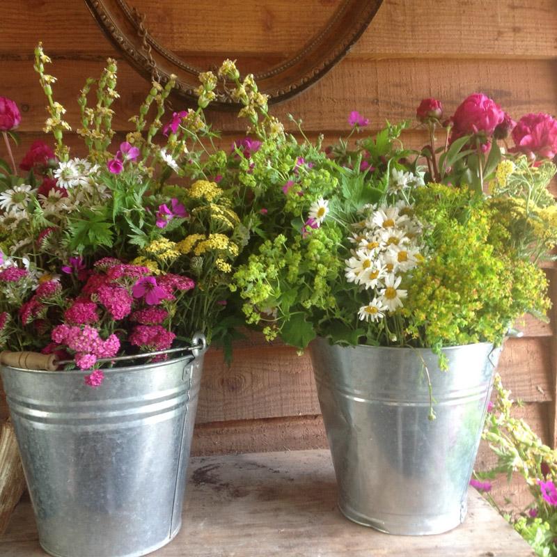 Buckets Of Fresh Flowers Babylon Flowers Florist