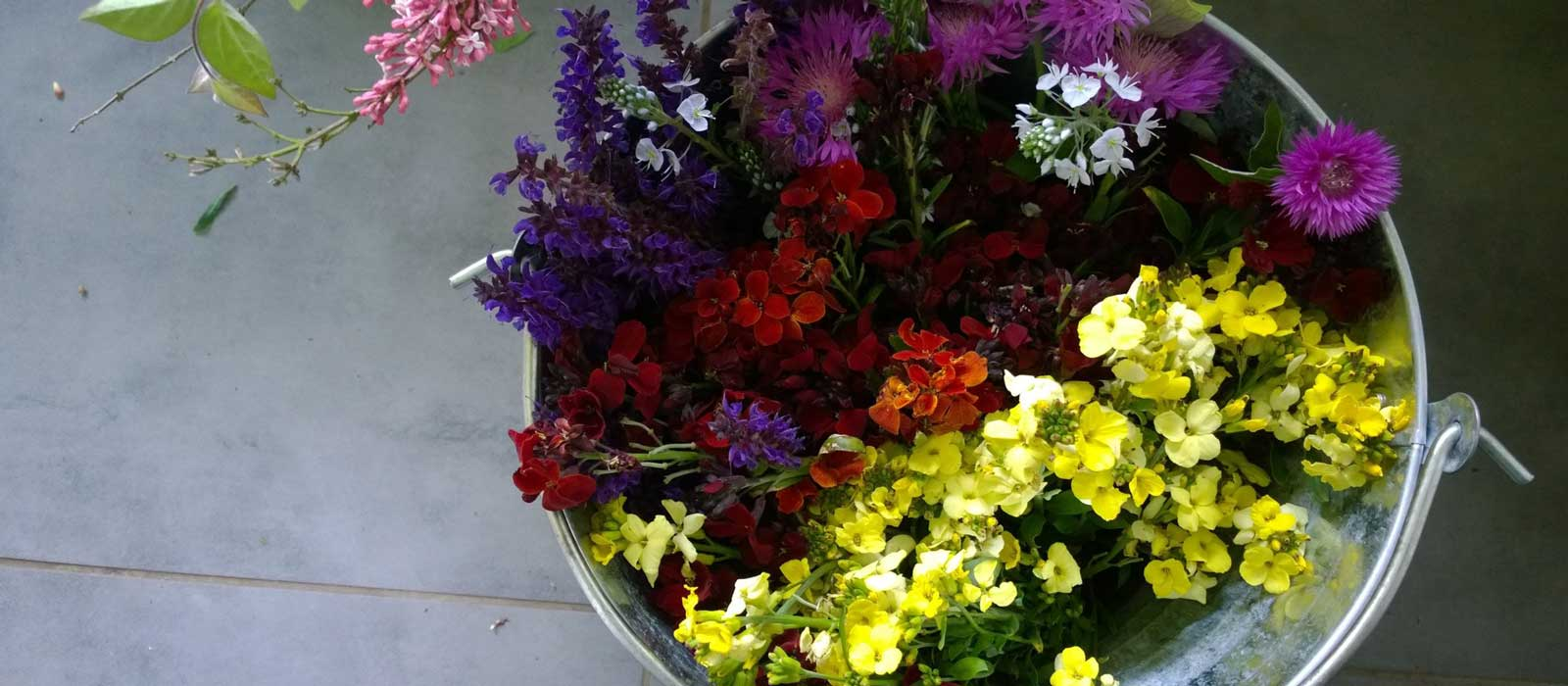 Photo of Buckets of Flowers by a florist in Oxfordshire